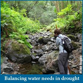 Balancing water needs in drought image