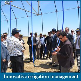 Innovative irrigation management image